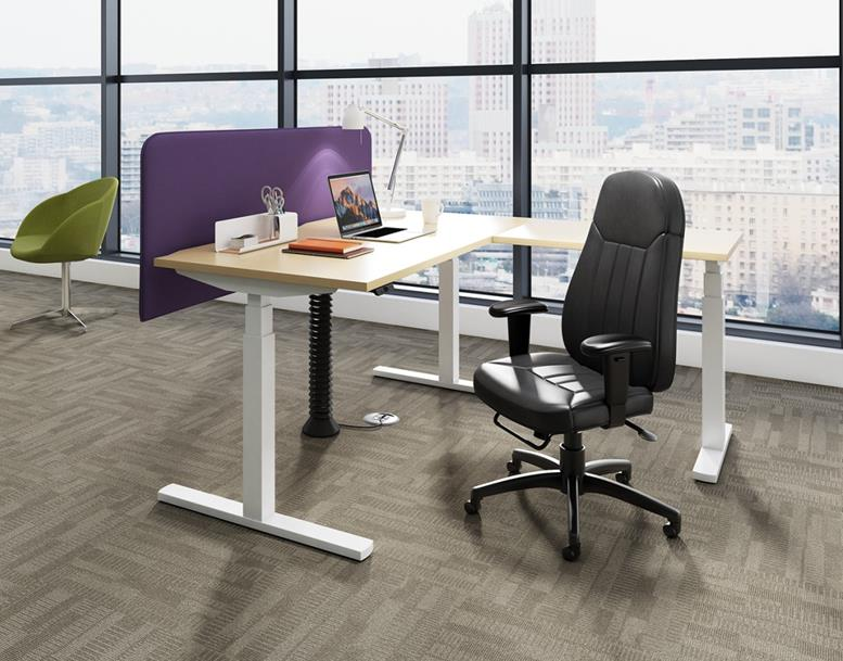 Elevate Electric Height Adjustable Office Desk